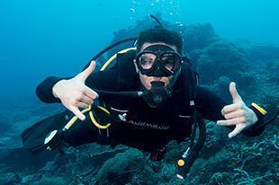 Strips Diver Mola Mola Rock Sign Gili Islands Bali 310x207